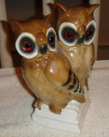 6489/F Two Owls Atop Books