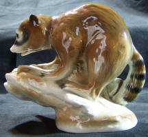 7940-animals-racoon side view